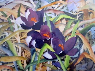 Crocuses - Elizabeth Sawyer Kelly