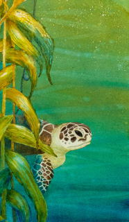 Vanishing Species, Green Sea Turtle - Vicki Pierce